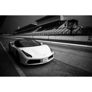 フェラーリ 488 GTB スパイダー カスタム【日本製】アートボード/アートパネル artmart アートマート 絵画や写真をアルミフレームで表現(90p-fa0005-gry-sa) atmys 05