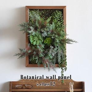 Botanical s.class 12 サイズ:幅300 奥行78 高さ450 mm グリーンパー...