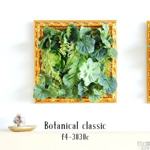 Botanical classic f4-3030c サイズ:幅370 奥行35 高さ370 mm ...