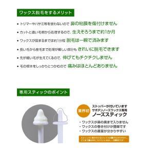 サボテンノーズワックス スターターセット (約50回分)|atomya-store|04