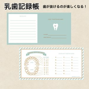 乳歯記録帳 乳歯ケース お供に  普通郵便発送 atsumeru