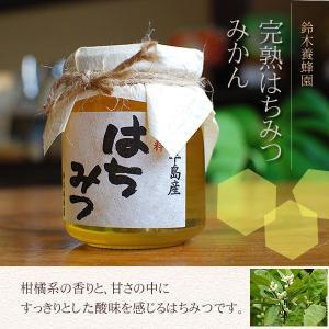 100%国産・愛知県渥美半島で採れた完熟はちみつ(みかん 170g)|atsumi-hantou888