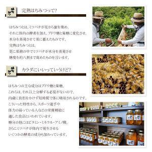 100%国産・愛知県渥美半島で採れた完熟はちみつ(みかん 170g)|atsumi-hantou888|02