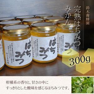 100%国産・愛知県渥美半島で採れた完熟はちみつ(みかん 300g)|atsumi-hantou888