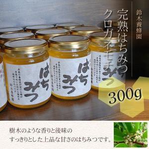 100%国産・愛知県渥美半島で採れた完熟はちみつ(クロガネモチ 300g)|atsumi-hantou888
