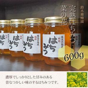 100%国産・愛知県渥美半島で採れた完熟はちみつ(菜の花 600g)|atsumi-hantou888