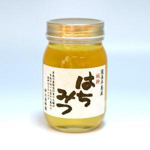 100%国産・愛知県渥美半島で採れた完熟はちみつ(菜の花 600g)|atsumi-hantou888|03