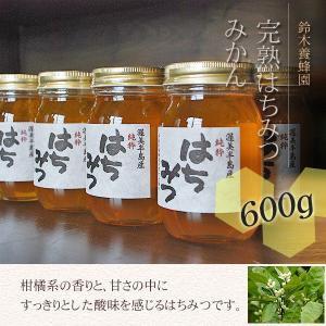 100%国産・愛知県渥美半島で採れた完熟はちみつ(みかん 600g)|atsumi-hantou888