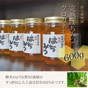 100%国産・愛知県渥美半島で採れた完熟はちみつ(クロガネモチ 600g)|atsumi-hantou888
