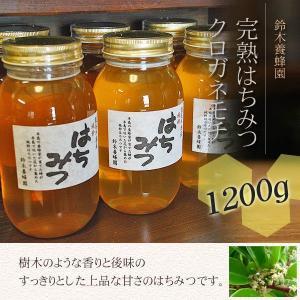 100%国産・愛知県渥美半島で採れた完熟はちみつ(クロガネモチ 1200g)|atsumi-hantou888