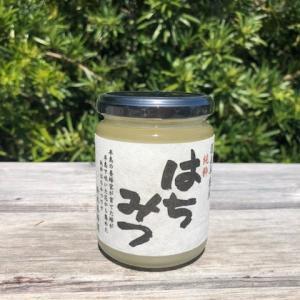 完全非加熱 菜の花はちみつ 300g 【数量限定】|atsumi-hantou888