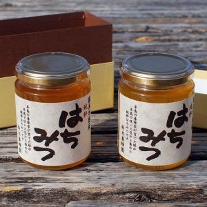 愛知県渥美半島で採れた完熟はちみつ 300g×2本(クロガネモチ、百花みつ)|atsumi-hantou888