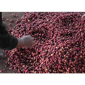 コーヒー豆 ミャンマー ハニー 500g atsumicoffee