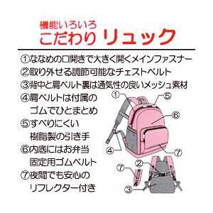 ミキハウス【MIKI HOUSE】プッチー&う...の詳細画像2