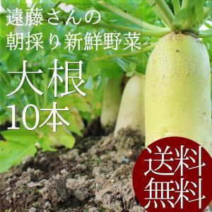新潟県阿賀野市の農家遠藤さんの大根を朝採りして直送します。 1本あたり1.5kg以上の大きなダイコン...