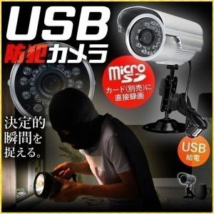 防犯カメラ 屋外 家庭用 動物 監視カメラ 録画 USB式 SDカード録画 カメラ 防犯 ペット 留...
