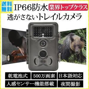 トレイルカメラ 防水IP66 説明書付き 人感センサー 屋外 防犯 電池式 不可視 上書き ミニ 防犯カメラ SD録画 野生動物 小型 モニター カメラ