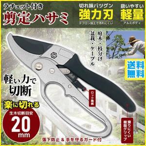 ラチェット式バサミとは、ラチェット機構を使う事で 20mm程度の固い枝でもサクサクと切ることがで...