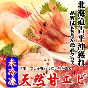 北海道産「生」1kg Lサイズ(オス)/南蛮エビ/獲れたて冷蔵発送/安心の古平沖獲れ(甘エビ 甘海老 甘えび)   |atumaru-suisan