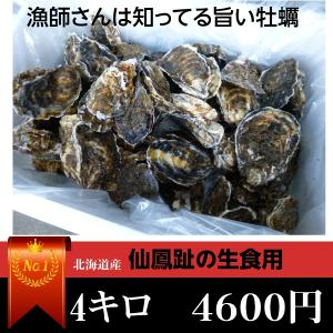 牡蠣/最大70個前後4キロ(訳あり ハネモノ)厚岸西岸 仙鳳趾 生牡蠣(かき)(殻付き 生食)/牡蛎 |atumaru-suisan