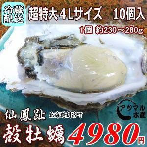 レア/3年物 特大4L 10個/北海道・活牡蠣(カキ)(殻付き 生食)牡蠣・厚岸西岸 仙鳳趾/牡蛎 殿牡蠣|atumaru-suisan