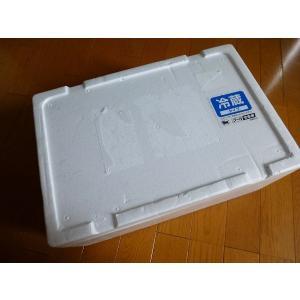 牡蠣14キロ(訳あり ハネモノ)厚岸西岸 仙鳳趾 生牡蠣(かき)(殻付き 生食)/牡蛎|atumaru-suisan|04