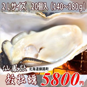 北海道仙鳳趾産・生牡蠣(カキ)2Lサイズ20個(殻付き 生食)/1個130〜180g|atumaru-suisan