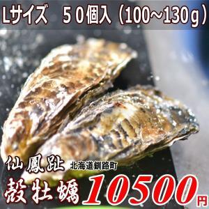 北海道釧路町仙鳳趾/殻付き生牡蠣(かき)Lサイズ50個入 1個100〜130g |atumaru-suisan