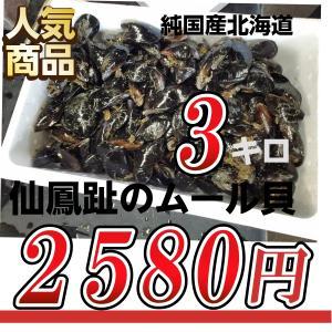 【サイズ不揃い】北海道釧路産ムール貝(カラスガイ)3kg 訳あり|atumaru-suisan