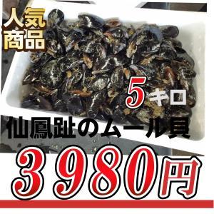 【サイズ不揃い】北海道釧路産ムール貝(カラスガイ)5kg 訳...