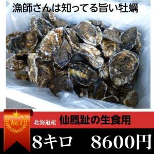 牡蠣/最大140個 8キロ(訳あり ハネモノ)厚岸西岸 仙鳳趾 生牡蠣(かき)(殻付き 生食)/牡蛎|atumaru-suisan
