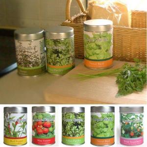 【商品名】 ホームガーデンS 【商品説明】 キッチンで育ったフレッシュハーブやミニトマトをちょっと摘...