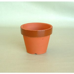 駄温鉢〈駄鉢〉 深型 3.5号 陶器鉢 国産植木鉢 常滑焼 素焼き鉢 和風 陶器鉢 テラコッタ 盆栽...