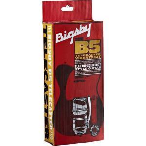 Bigsby B5 Vibrato Kit for Flat Top Solid Body Guitars ソリッドギター用 ビグズビー|audio-mania