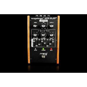 お取り寄せ Moog エフェクター Mooger Fooger MF-105M MIDI MuRF MF105 MF-105 直輸入品 audio-mania