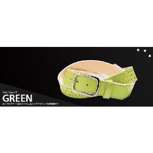 SAGO guitar S_IX ギターストラップ Fairy Dry-LEX Green グリーン 国内正規品 audio-mania