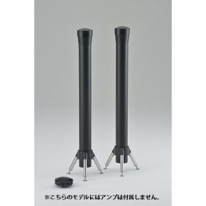 Dimension 09(ディメンション09) スタンダードカラー 【艶消し・アンプ無モデル 】|audioparts