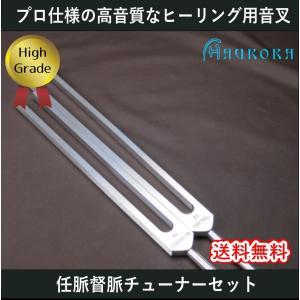 ハイグレード音叉 任脈督脈チューナー2本セット Made in USA|aurorastore