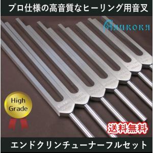 ハイグレード音叉 エンドクリンチューナー7本フルセット Made in USA|aurorastore