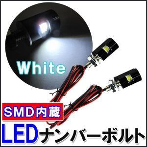 (12V車用)LEDナンバーボルト(白) 2個セット|autoagency