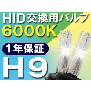HID交換用バルブ / H9 / 6000K / 2個セット / 1年保証 / 25W-35W-55W対応 / 12V|autoagency