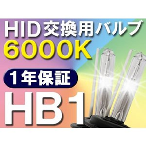 HID交換用バルブ / HB1 / 6000K / 2個セット / 1年保証 / 25W-35W-55W対応 / 12V|autoagency