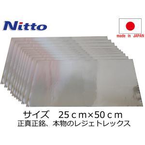 即納 日東電工製 レジェトレックス制振シート 250×500mm 10枚(ばら売り)