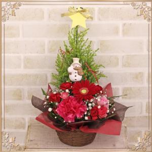 送料無料 クリスマスアレンジ コニファーと生花 アロマ効果 クリスマスギフト 結婚祝い 誕生日プレゼント 結婚記念日 贈り物|avonlea