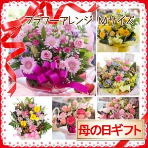 2019 母の日 花 人気 ギフト プレゼント フラワーアレンジ 季節のお花おまかせフラワーアレンジメント Mサイズ|avonlea