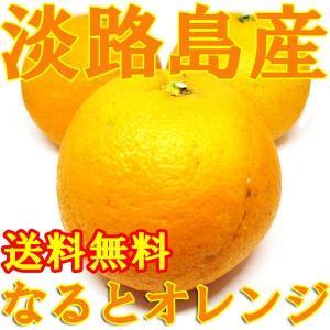 淡路島産 なるとオレンジ 5個入 送料無料