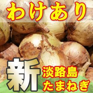 たまねぎ 淡路島 送料無料 2020年産 特産 玉ねぎ 10kg わけあり awabeji
