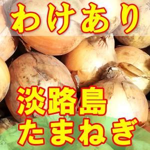 たまねぎ 淡路島 送料無料 2020年産 特産 玉ねぎ 20kg わけあり awabeji