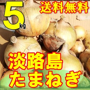 たまねぎ 淡路島 送料無料 2020年産 特産 玉ねぎ 5kg M・L混合 awabeji