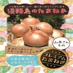 【自宅用♪】淡路島玉ねぎ 訳あり10kg 【送料無料】玉ねぎの本場、淡路島から産地直送♪|awaji-gift
